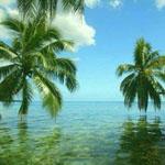 جزر البهاما..