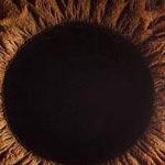 صورة مدهشه لعين بشرية بشكل مقرب