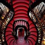 صورة من داخل مكتبة ليلو في بورتو - ال...
