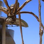 العنكبوت ماما غوغنهايم