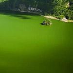 بحيرة تال - الفليبين