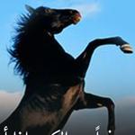 كن حذرا من الكريم!!
