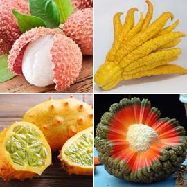 صور: تعرفوا إلى أغرب أنواع الفواكه في العالم التي لم نسمع عنها من قبل