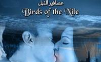 فيلم عصافير النيل