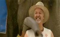 احذر يوجد فيل من خلفك